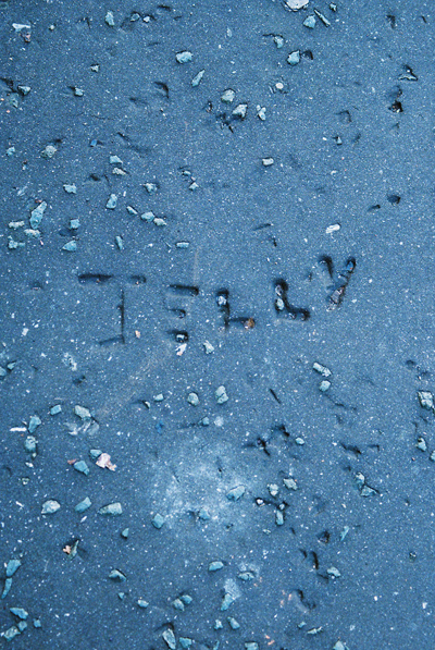 Jelly | Jeli by Cardiff to the See